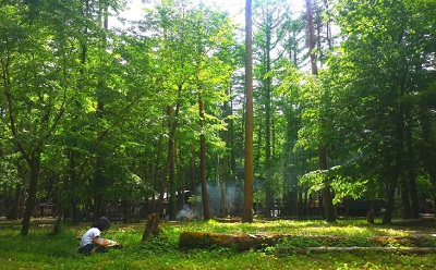 清水国明の森と湖の楽園